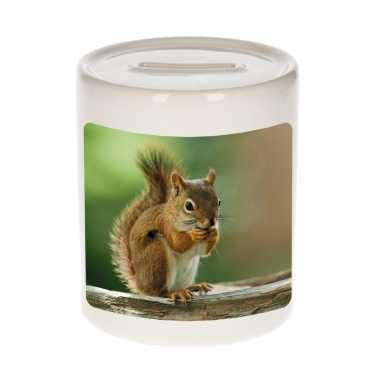Dieren foto spaarpot eekhoorn 9 cm eekhoorns spaarpotten en meisjes
