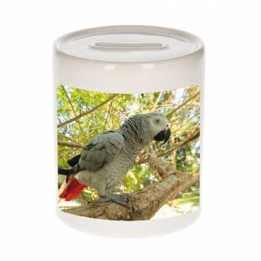 Dieren foto spaarpot grijze roodstaart papegaai 9 cm papegaaien spaarpotten en meisjes