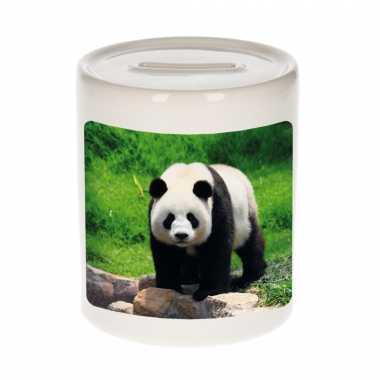 Dieren foto spaarpot grote panda 9 cm pandaberen spaarpotten en meisjes