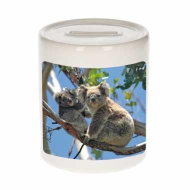 Dieren foto spaarpot koala beer 9 cm koalaberen spaarpotten en meisjes