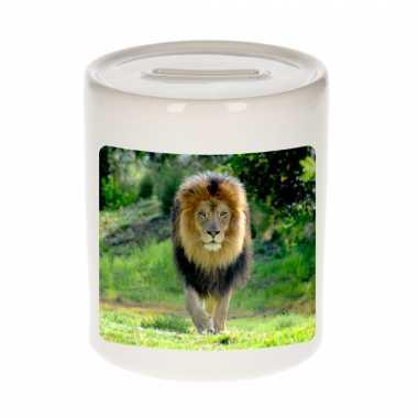 Dieren foto spaarpot leeuw 9 cm leeuwen spaarpotten en meisjes