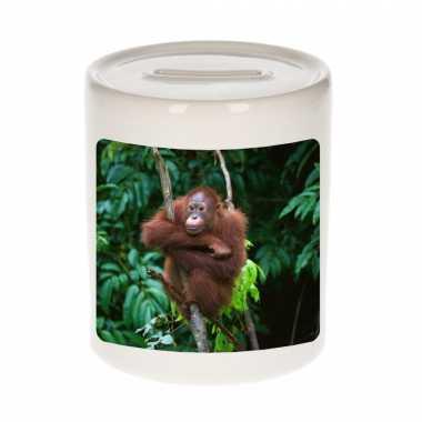 Dieren foto spaarpot orang oetan 9 cm apen spaarpotten en meisjes