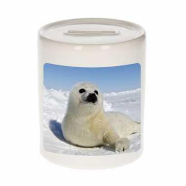 Dieren foto spaarpot zeehond 9 cm zeehonden spaarpotten en meisjes