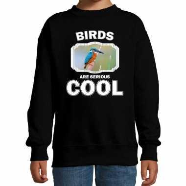Dieren ijsvogel sweater zwart kinderen birds are cool trui en meisjes