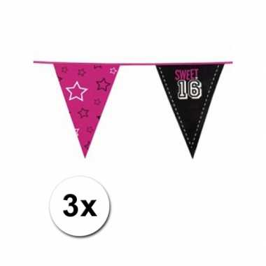 Meisjes feestartikelen sweet 16 vlaggenlijn 3 st