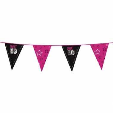 Meisjes feestartikelen sweet 16 vlaggenlijn