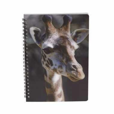 Meisjes giraffe schrift 3d 21cm