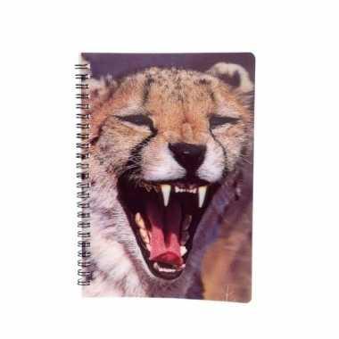 Meisjes luipaard schrift 3d 21cm