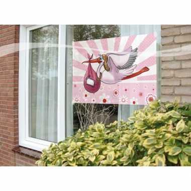 Meisjes raamvlag geboorte meisje
