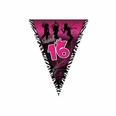 Meisjes sweet 16 slinger zwart/roze 5 meter