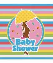 Meisjes feest servetten babyshower